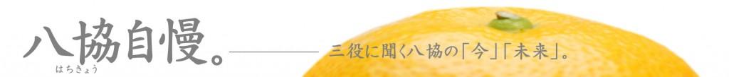 banner_hachikyojiman