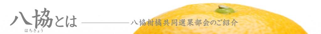 banner_hachikyotoha